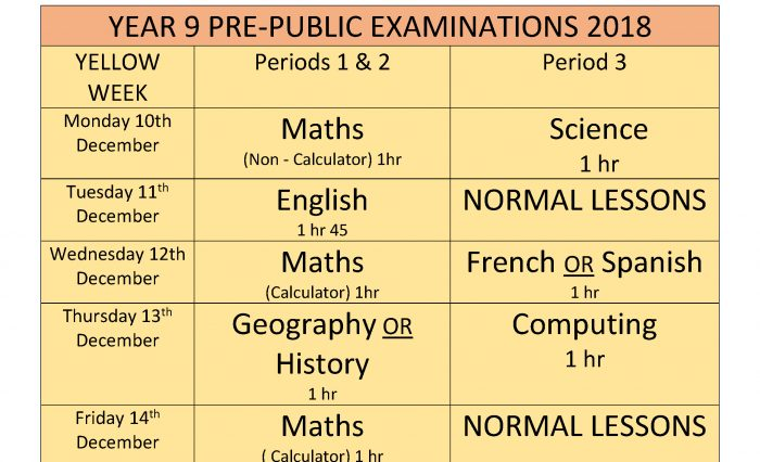 Year 9 PPE Timetable 2018